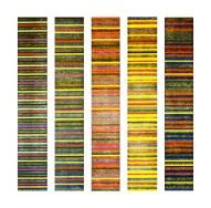 ADN-de-Fibonacci-2009