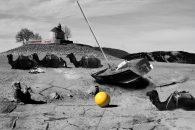 baie_saintmichel-jaune